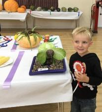 Daventry Flower and Vegetable Show 2017